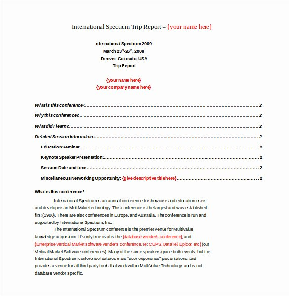 Field Report Example Beautiful 18 Business Trip Report Templates Word Pdf