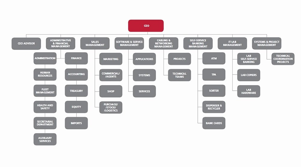 Fillable organizational Chart Luxury Fillable organizational Chart Reverse Search