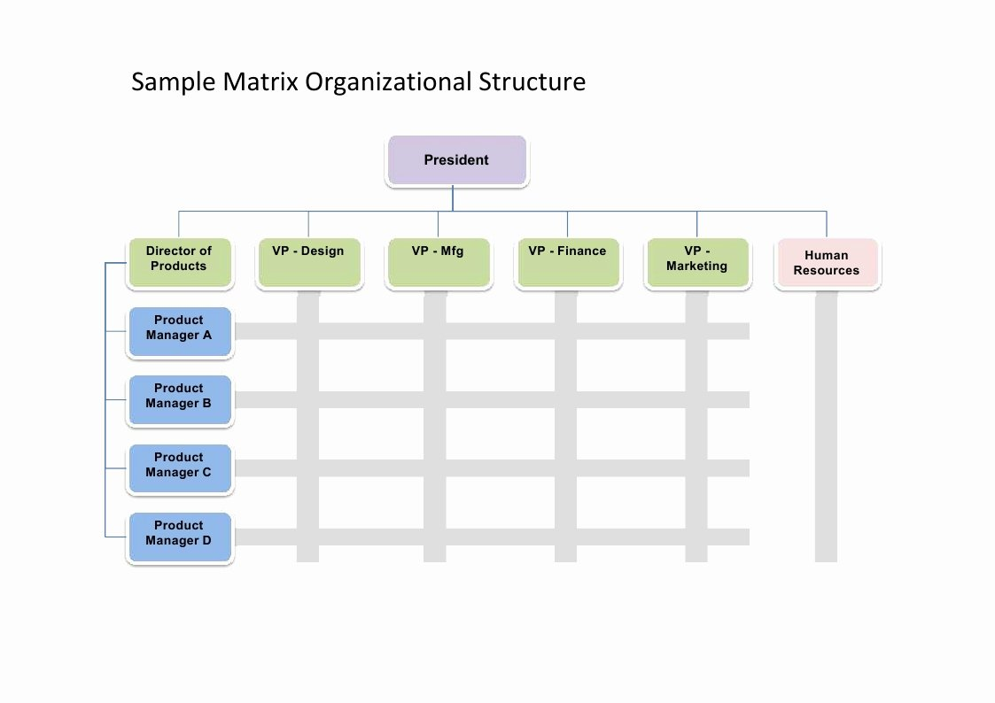 Fillable organizational Chart New 28 Of organizational Chart Template to Fill