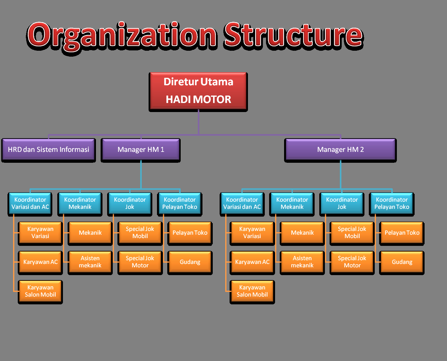 Fillable organizational Chart New organization Chart