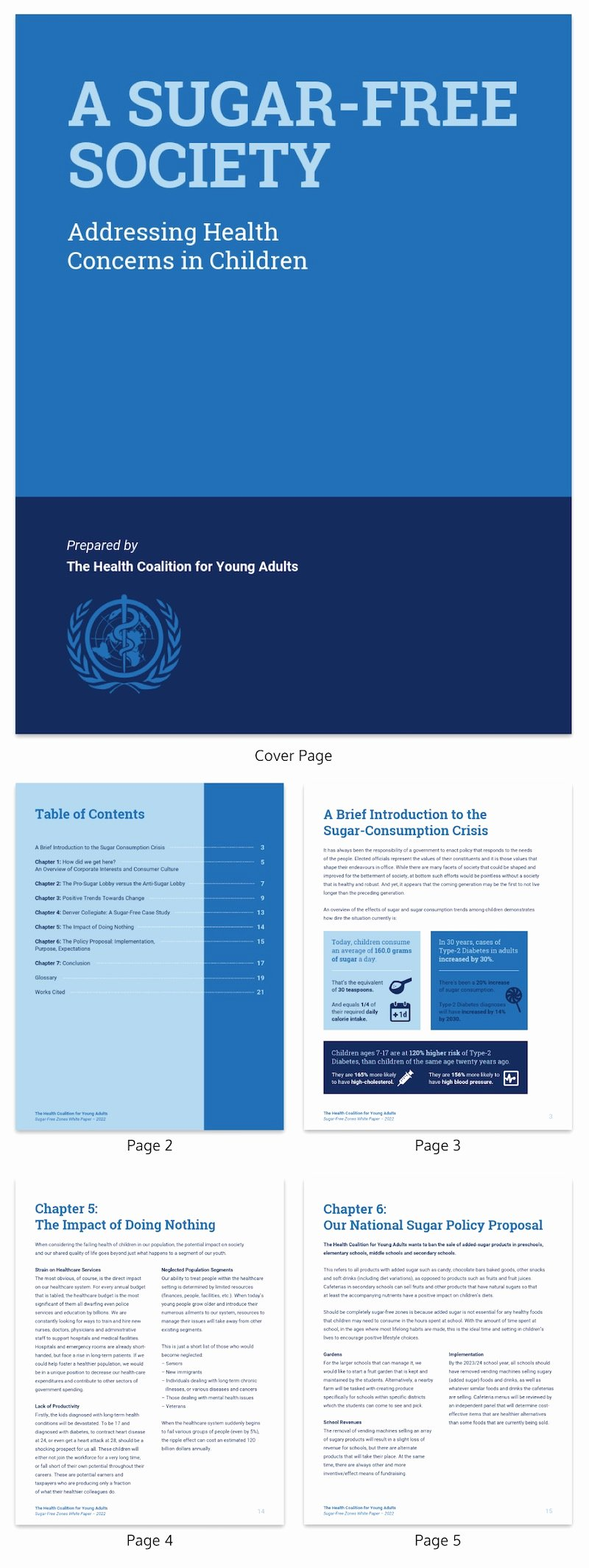 Findings Report Template Elegant 30 Business Report Templates that Every Business Needs