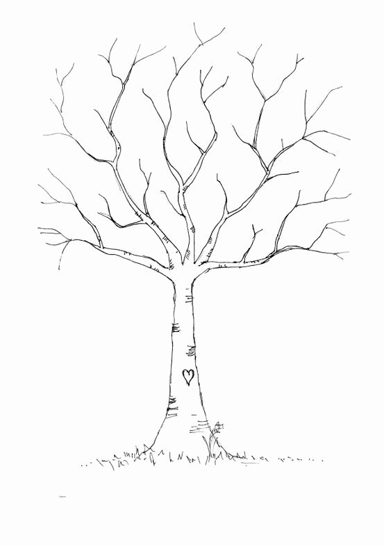 Fingerprint Trees Templates New 553×783 Pixels for the Boy