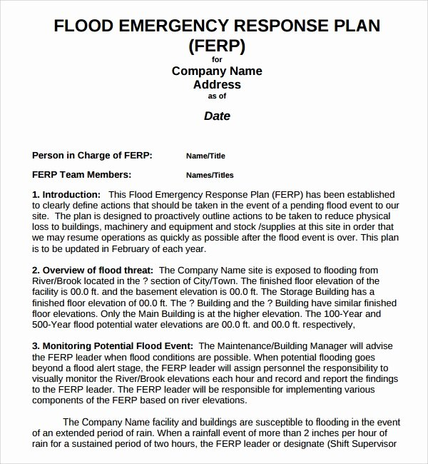 Flood Emergency Response Plan Template Best Of 10 Emergency Response Plan Templates