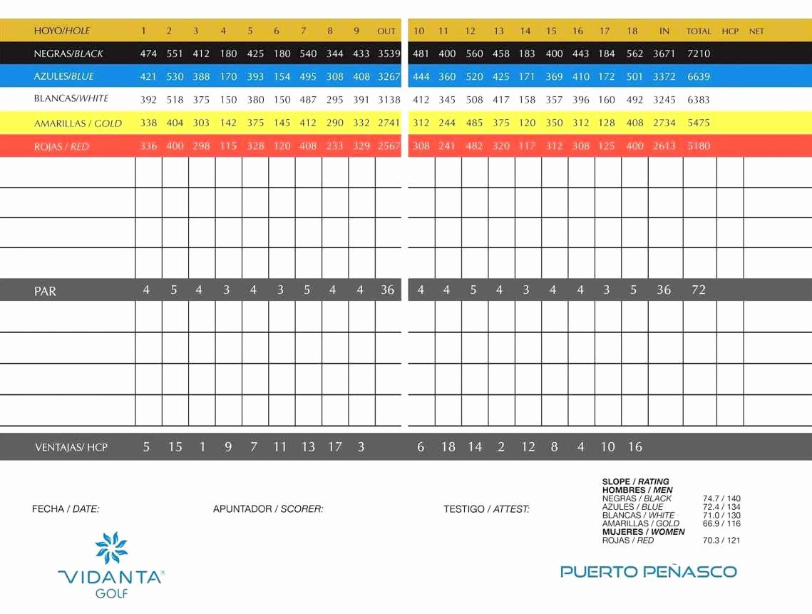 Football Stats Sheet Excel Template Lovely Golf Stats Excel Template