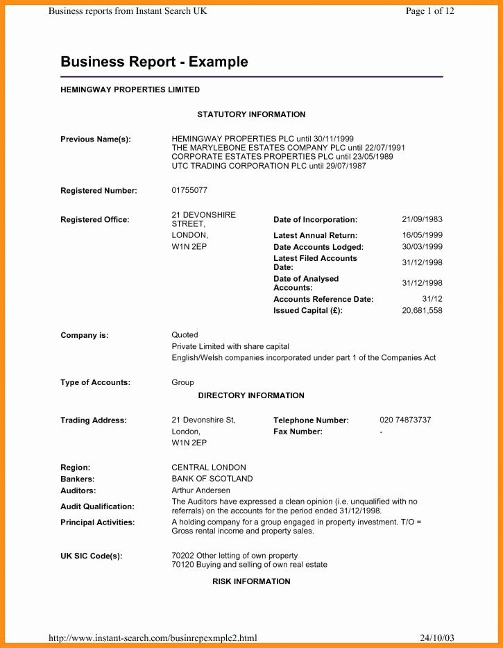 Formal Business Report Example Lovely Business Report format