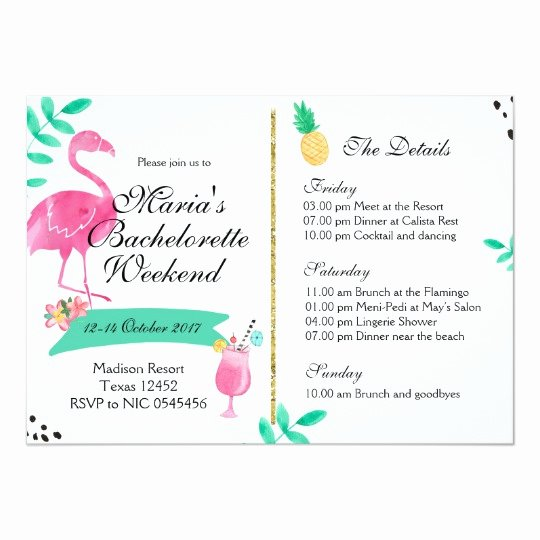Free Bachelorette Itinerary Template Beautiful Flamingo Bachelorette Weekend Itinerary Invitation