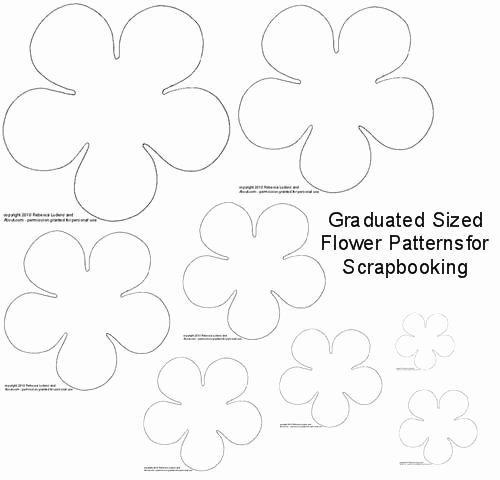 Free Cricut Paper Flower Template Best Of 308 Best Images About Cricut Templates On Pinterest