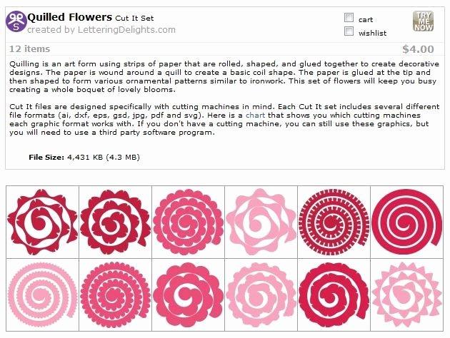 Free Cricut Paper Flower Template Fresh Quilled Flower Templates Svg Cricut