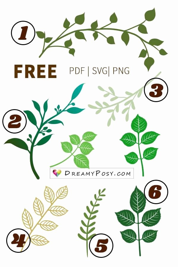 Free Cricut Paper Flower Template Lovely Leaves Template Branch Template Free Pdf Svg Png Files