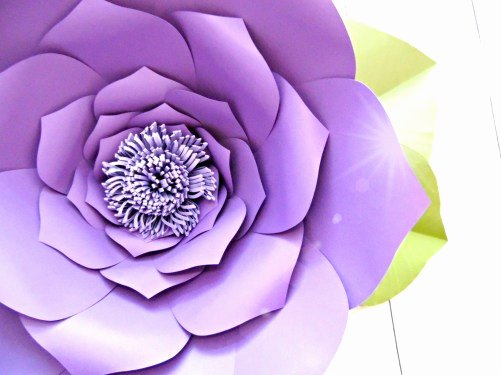 Free Cricut Paper Flower Template Luxury How to Make Giant Paper Flowers Step by Step Tutorial
