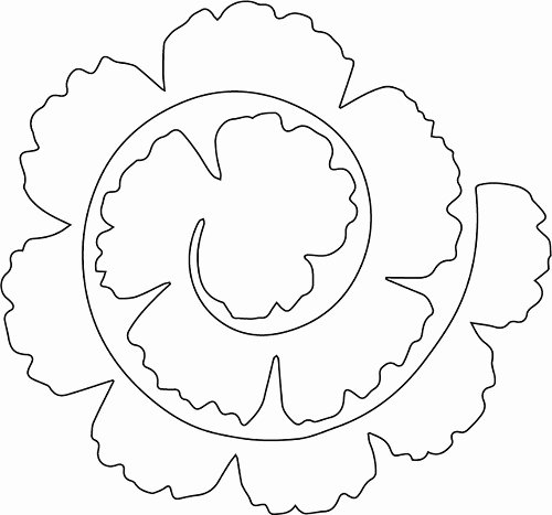 Free Cricut Paper Flower Template Luxury Tags Rolled Flower