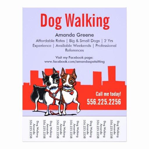 Free Dog Walking Flyer Template Best Of Dog Walking Walker Boston Terriers Tear Sheet Flyer Design