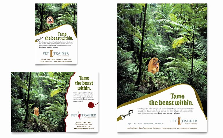 Free Dog Walking Flyer Template Lovely Pet Training & Dog Walking Flyer & Ad Template Word