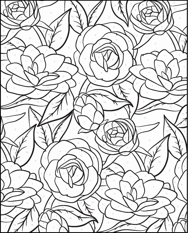 Free Paint by Numbers Templates Awesome Creative Haven Floral Designs Paint by Number Flower Blume