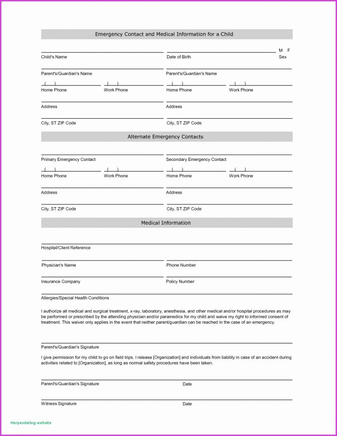 Free Patient Information form Template Luxury Fresh Chart format Ems