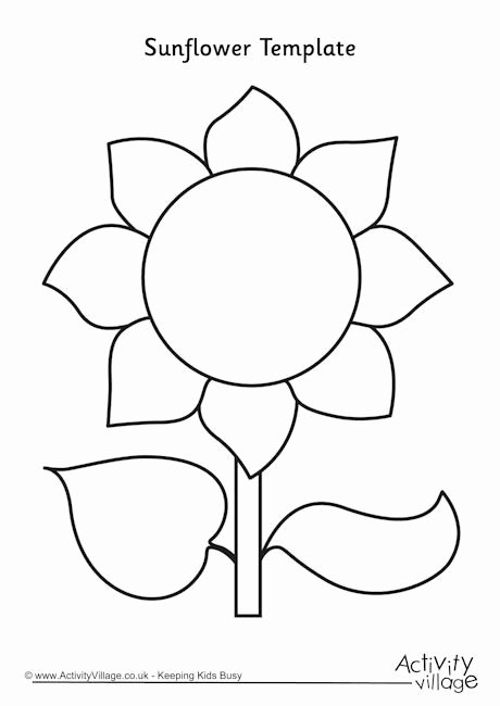 Free Printable Giant Flower Template Best Of Best 25 Flower Template Ideas On Pinterest