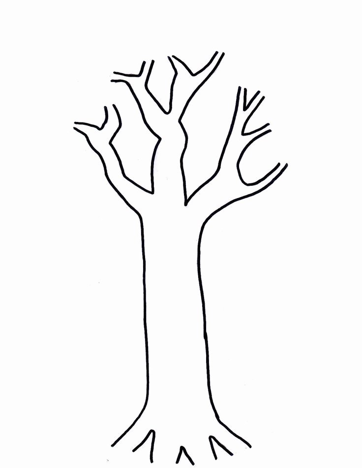 Free Printable Tree Template Awesome Free Printable Tree Template Coloring Home