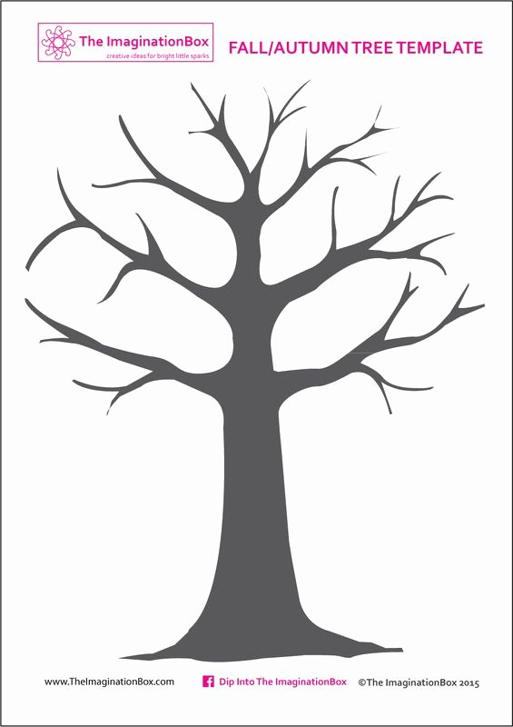 Free Printable Tree Template Beautiful 25 Best Ideas About Tree Templates On Pinterest