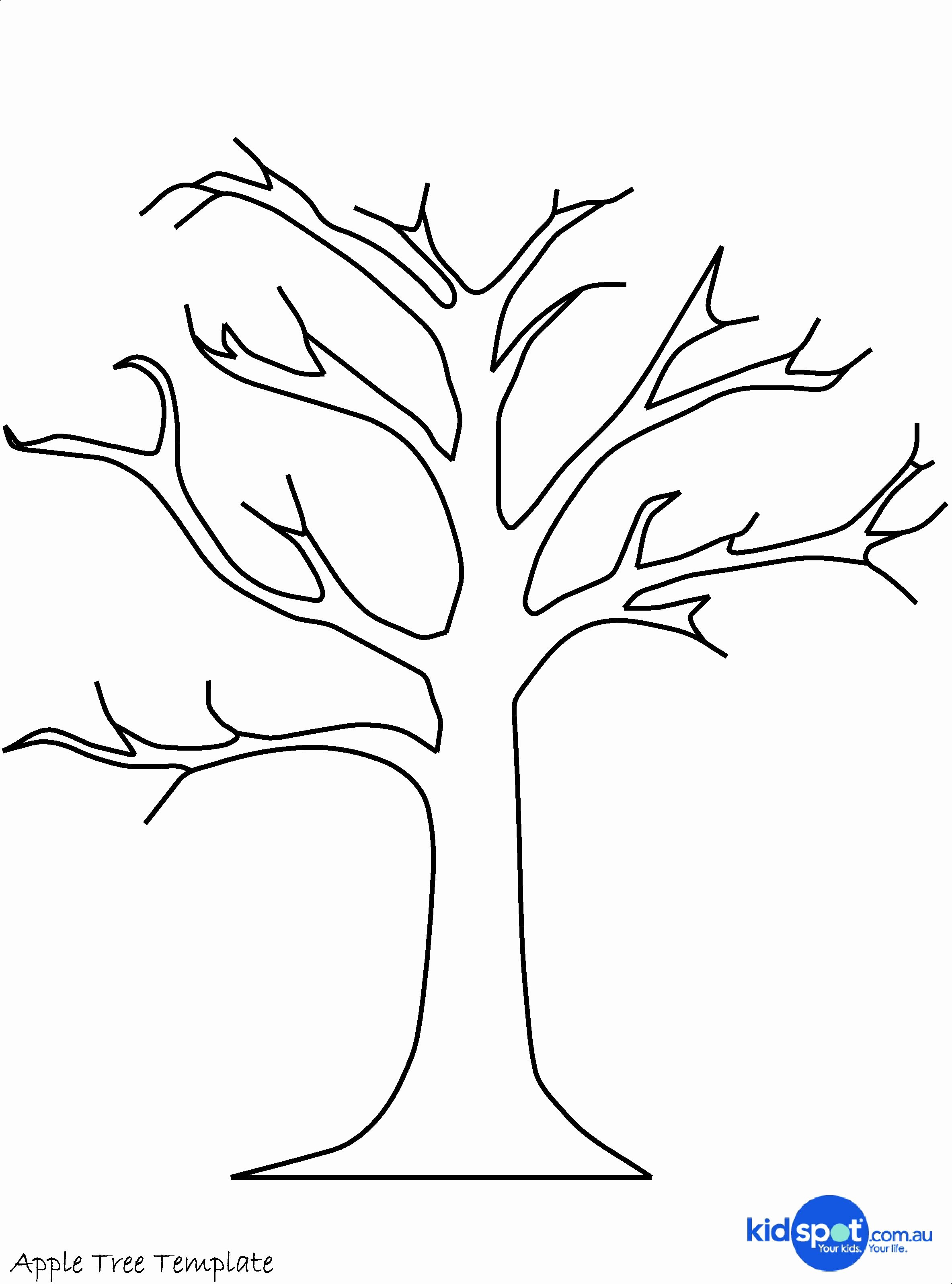 Free Printable Tree Template Beautiful Tree Templates On Pinterest