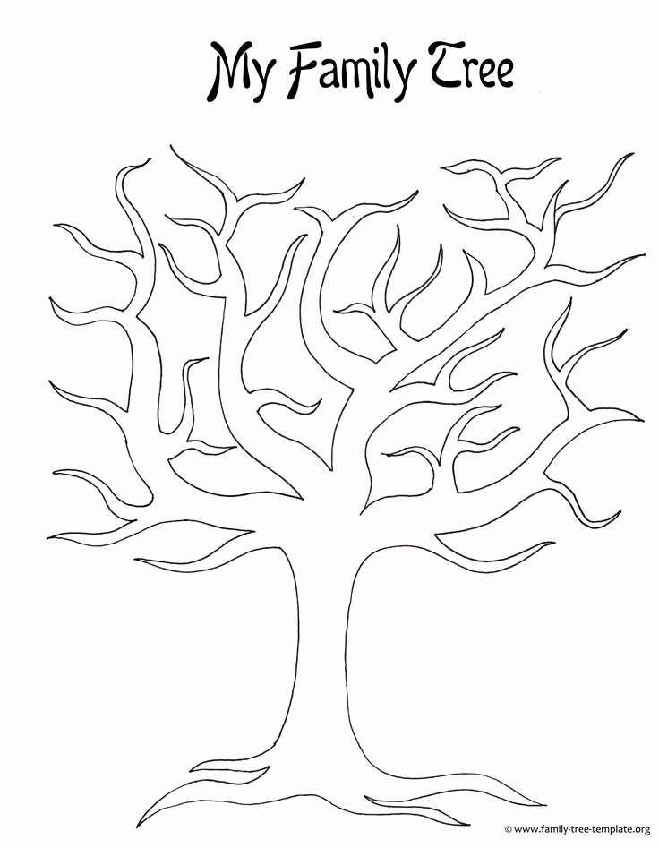 Free Printable Tree Template Elegant Best 25 Blank Family Tree Template Ideas On Pinterest