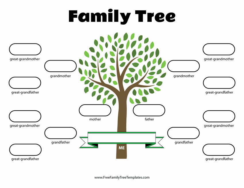 Free Printable Tree Template Luxury 4 Generation Family Tree Template – Free Family Tree Templates