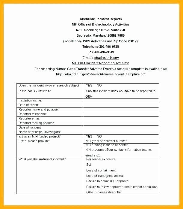 Grant Report Sample Luxury Grant Report form