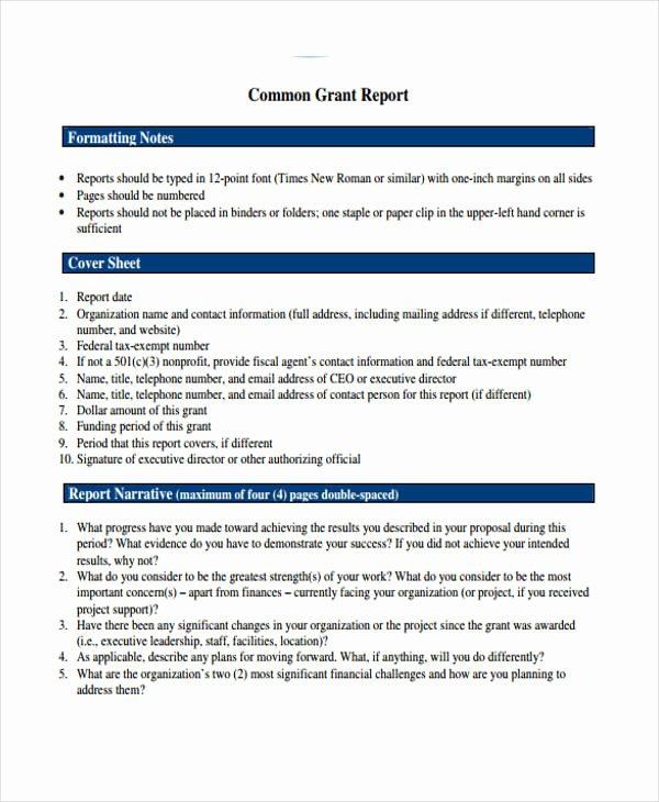 Grant Report Sample Unique 10 Grant Report Templates