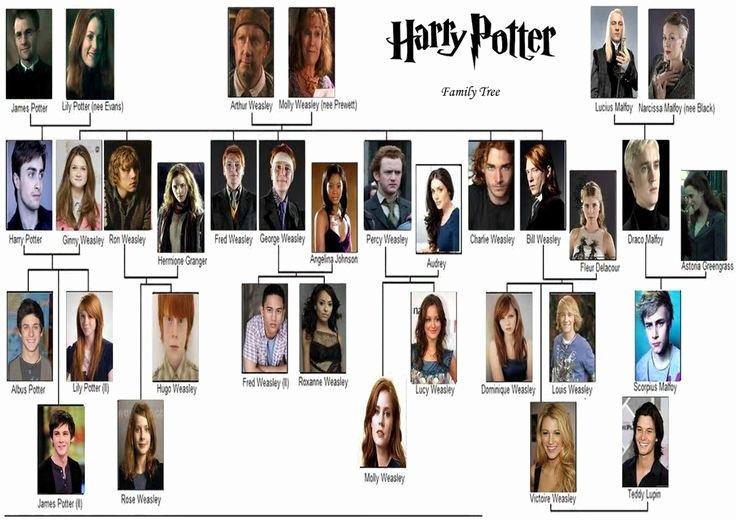 Harry Potter Google Slides theme Awesome Die 25 Besten Ideen Zu Harry Potter Stammbaum Auf