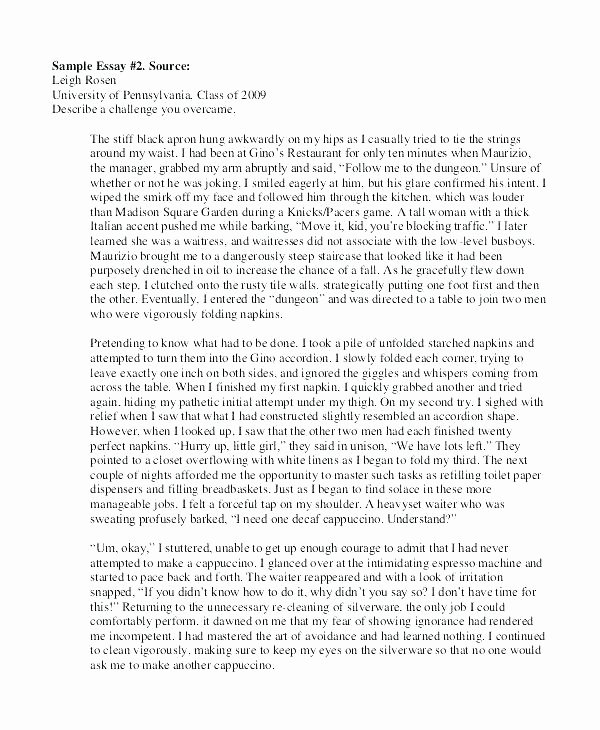 High School Application Essay Examples Awesome Essay Prompt Examples – Administrativelawjudgefo