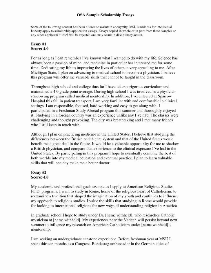 High School Application Essay Examples Inspirational Usyhnews