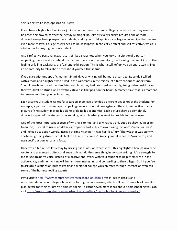 High School Application Essay Examples New Self Reflective College Application Essays