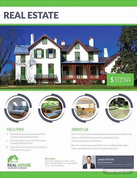 House for Sale Template Lovely 17 Free Sales Flyer Templates
