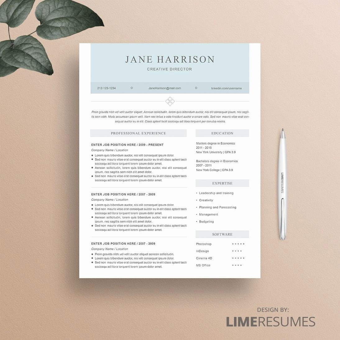 How to Cancel Resume now Luxury Resume Template 31