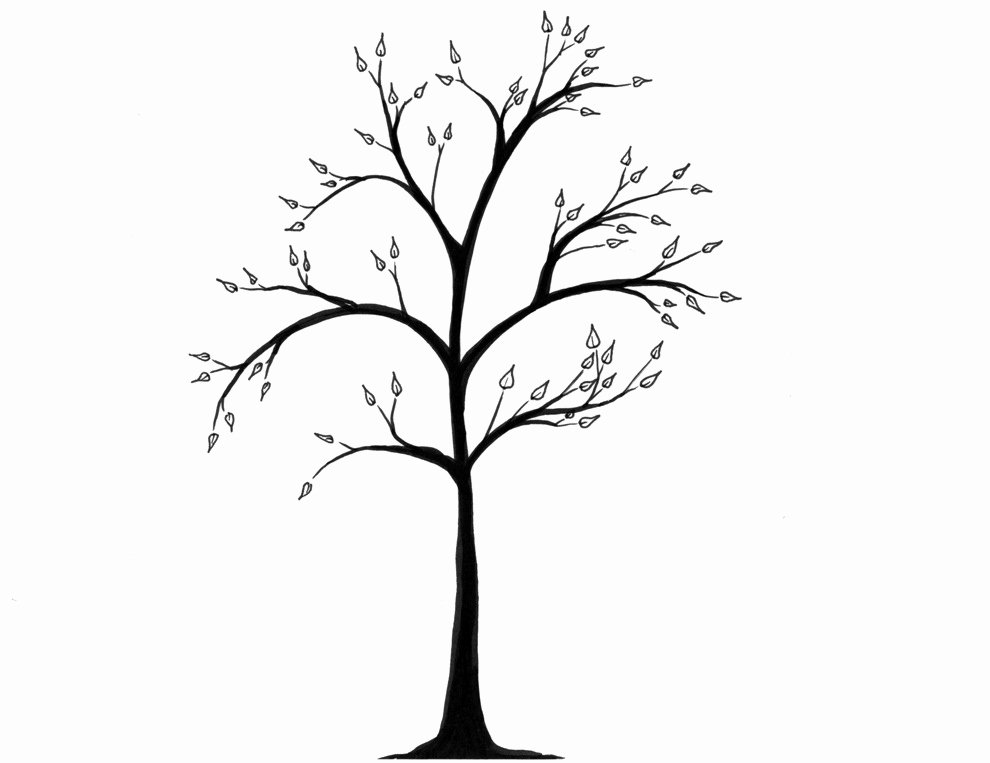 How to Draw A Simple Tree without Leaves Awesome Free Simple Tree Drawings Download Free Clip Art Free
