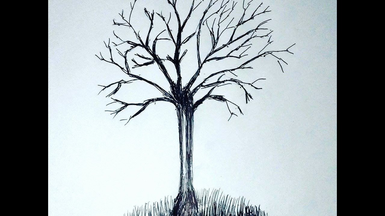 How to Draw A Simple Tree without Leaves Inspirational How to Draw A Realistic Tree without Leaves