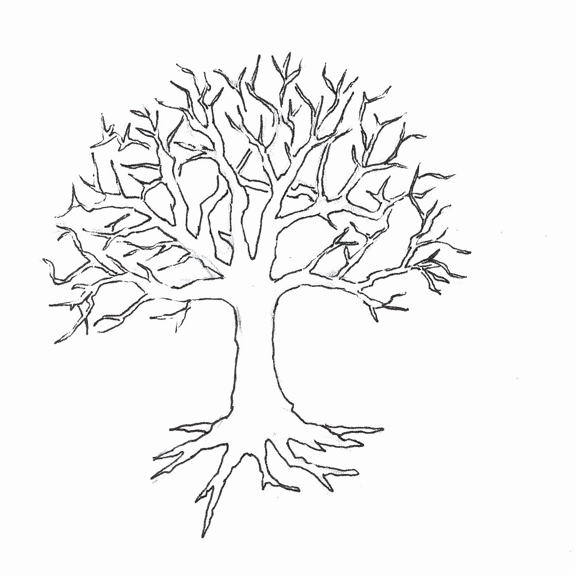 How to Draw A Simple Tree without Leaves Inspirational Tree without Leaves Coloring Page to Print and