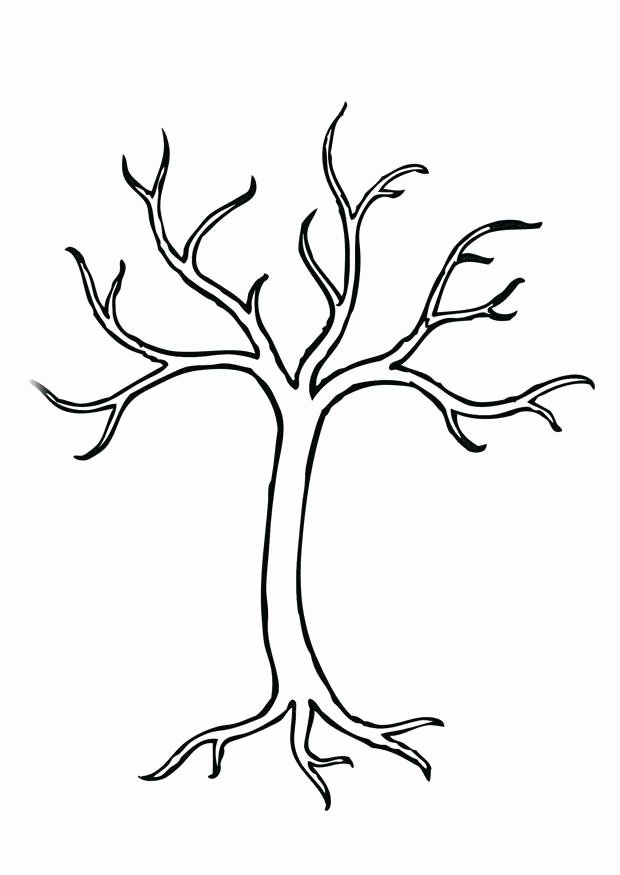 How to Draw A Simple Tree without Leaves Lovely Página Para Colorir árvore Img