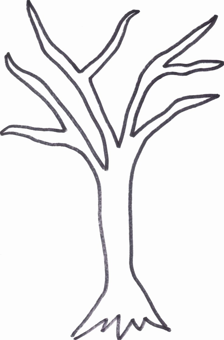 How to Draw A Simple Tree without Leaves Lovely Printable Tree Trunk