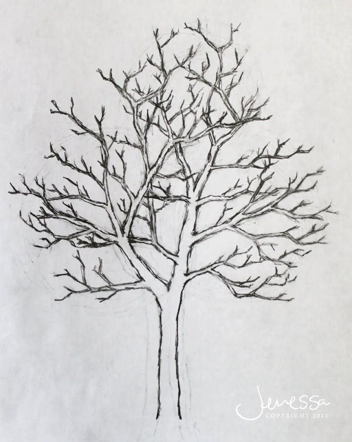 How to Draw A Simple Tree without Leaves Luxury S Easy Tree Pencil with Flower Drawing Drawings