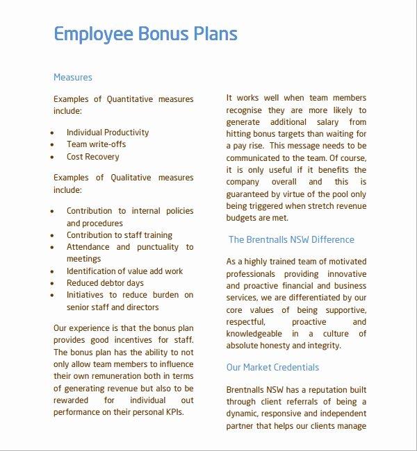 Incentive Plan Template Luxury 7 Bonus Plan Templates