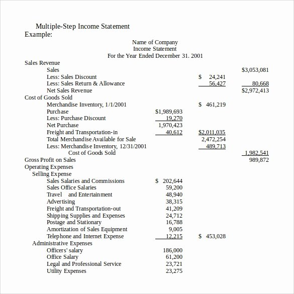 Income Statement Template Word Elegant 13 In E Statements – Samples Examples & format