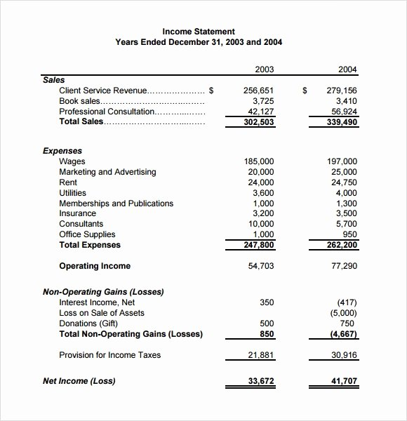 Income Statement Template Word New 10 Sample In E Statements
