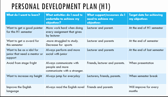 Individual Professional Development Plan Sample Beautiful Adyusofzz