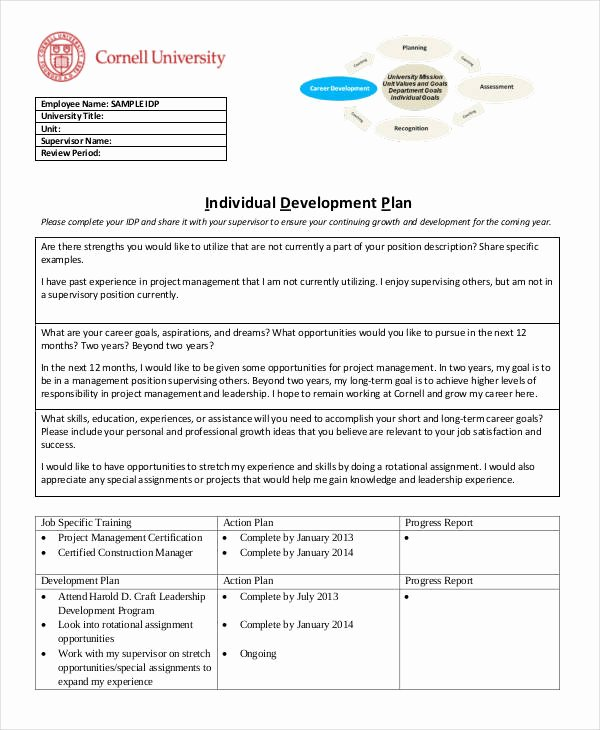 Individual Professional Development Plan Sample Unique 15 Individual Development Plan Templates Free Sample