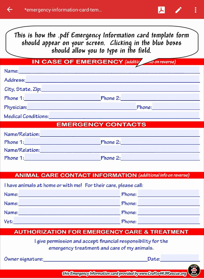 Information Card Template Awesome Emergency Information Card Template