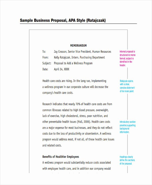 Internal Proposal Template Beautiful 12 Proposal Memo Examples & Samples Pdf Word Pages
