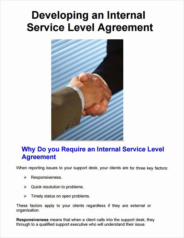 Internal Service Level Agreement Template Luxury Service Level Agreement 8 Free Pdf Doc Download