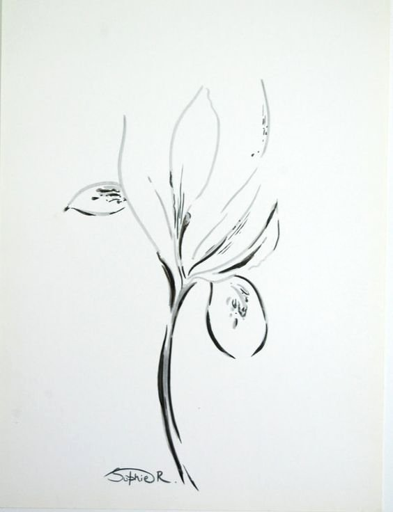 Iris Flower Outline Unique Iris Flowers Irises and Abstract Drawings On Pinterest