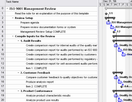 Iso 9001 Work Instruction Template Luxury iso 9001 Management Review Template for Project 2007