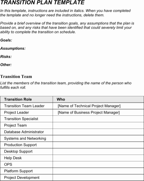 Job Transition Email Template Inspirational Transition Plan Template